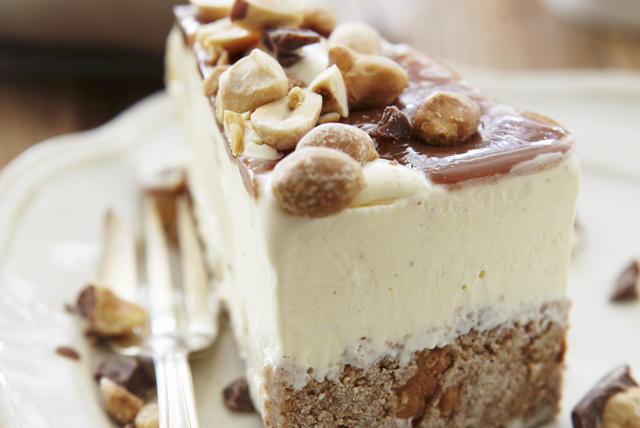 Frozen Peanut Butter Ice Cream Cake Image 1