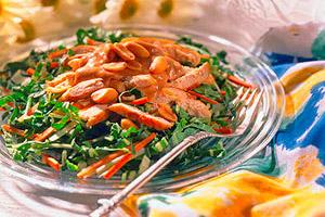 Chicken Salad with Tahini Sauce Image 1
