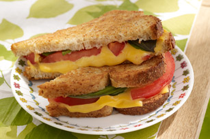 """Flavor-Full"" Grilled Cheese Image 1"