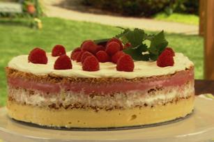 Gâteau aux sorbets étagés