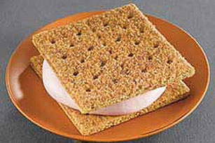 "Frozen ""Yogurt-Wich"" Image 1"
