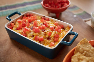 Bacon-Cheddar Onion Dip Image 1