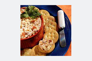 Salsa Cheese Spread Image 1