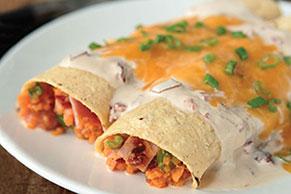 Enchiladas de camote en salsa cremosa de chipotles