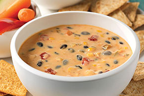 Spicy Mexican Cheese Dip with Beans