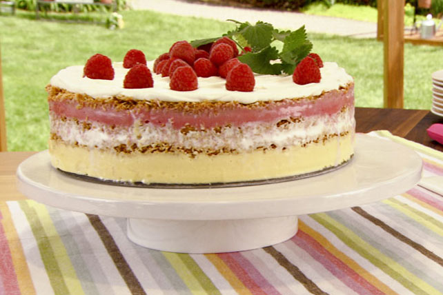 Frozen Layered Sorbet Torte Image 1