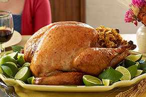 Glazed Honey-Lime Turkey