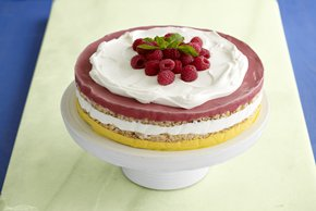 Frozen Layered Sorbet Torte