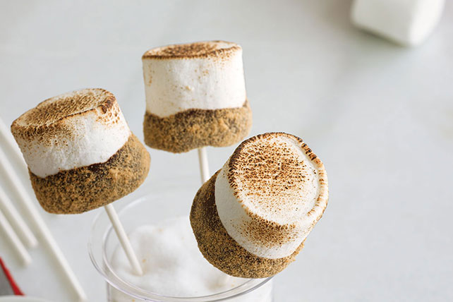 S'mores on a Stick Image 1