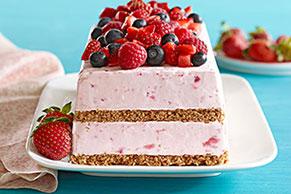 Berry Frozen Dessert