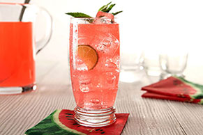 Sparkling Watermelon-Mojito Punch