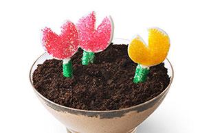 Flower Pot Cups