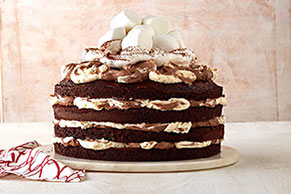 Hot Chocolate Torte