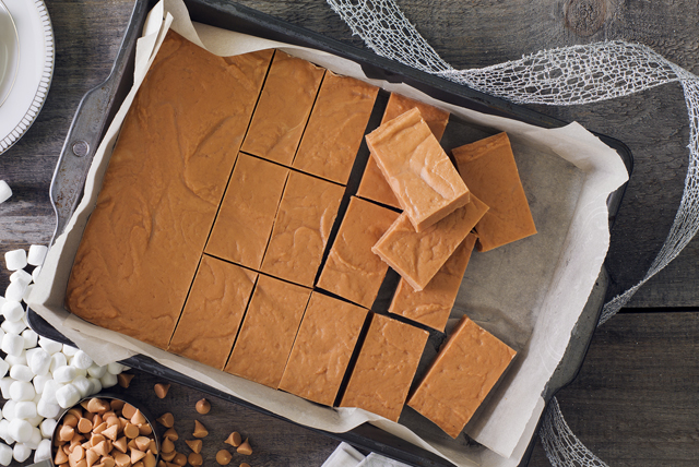 No-Bake Peanut Butter Marshmallow Bars Image 1