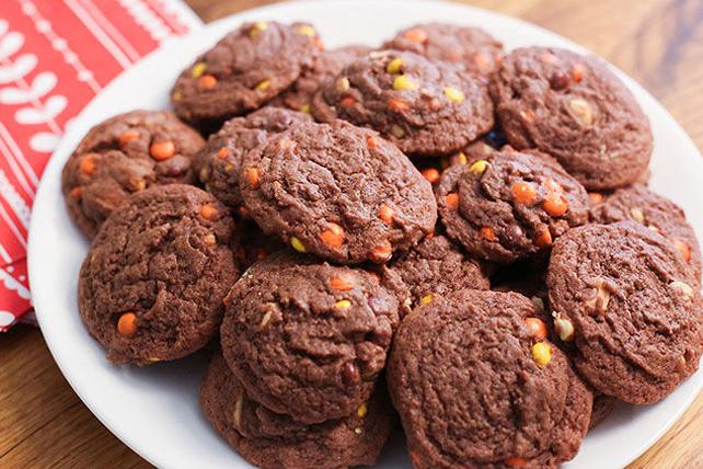 Biscuits au beurre d'arachide et au pouding au chocolat Image 1