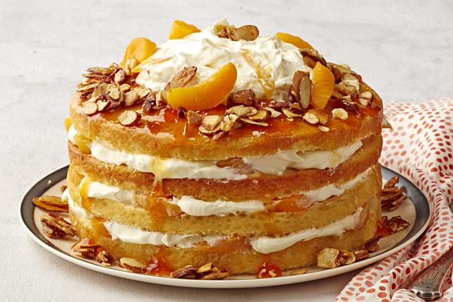 Gâteau à la crème aux abricots et aux amandes Image 1