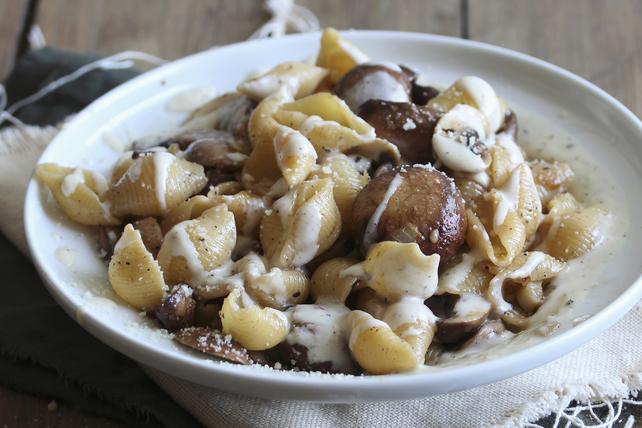 Pasta Shells with Creamy Mushroom Sauce Image 1