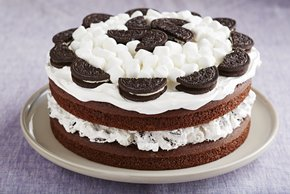 Marshmallow-Devil's Food Cake