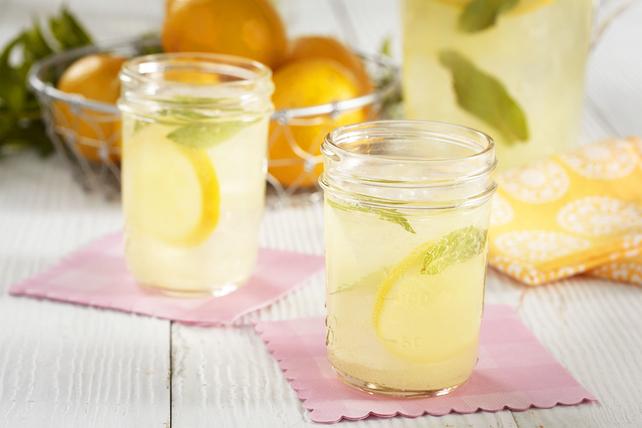 Sparkling Mint Lemonade Recipe Image 1