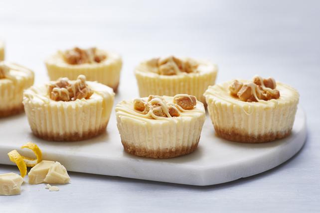Kraft Recipes Lemon Cake: Lemon-White Chocolate Mini Cheesecakes
