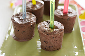 Cookies & Creme Pudding Pops