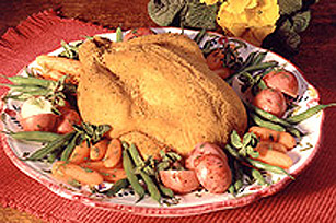 SHAKE'N BAKE Super Speedy Roast Chicken
