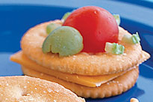 Turtle Cracker Critter Image 1
