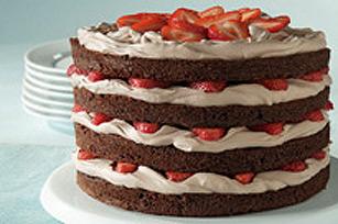 Gâteau étagé divin au chocolat