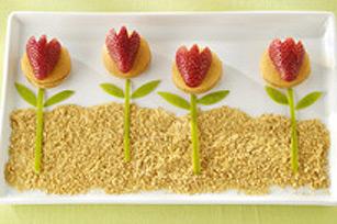Un jardin dans l'assiette Image 1
