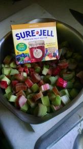 SURE.JELL Rhubarb Jam Image 2