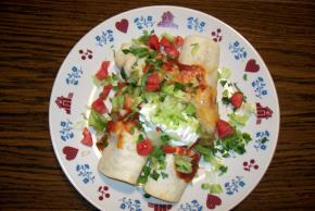 Chicken and Sour Cream Enchiladas Image 2