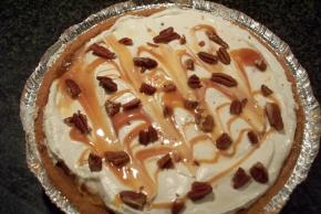 turtle-pumpkin-pie-106961 Image 2