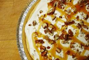 Turtle Pumpkin Pie Image 3