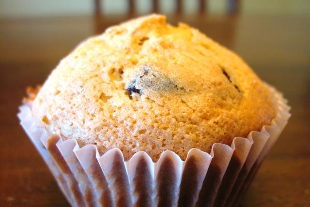 moist-cranberry-orange-muffins-463521 Image 1